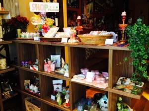 hudson shop